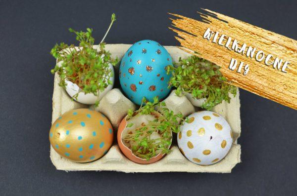 Dekoracja wielkanocna DIY: kolorowe pisanki i rzeżucha w skorupce jajka