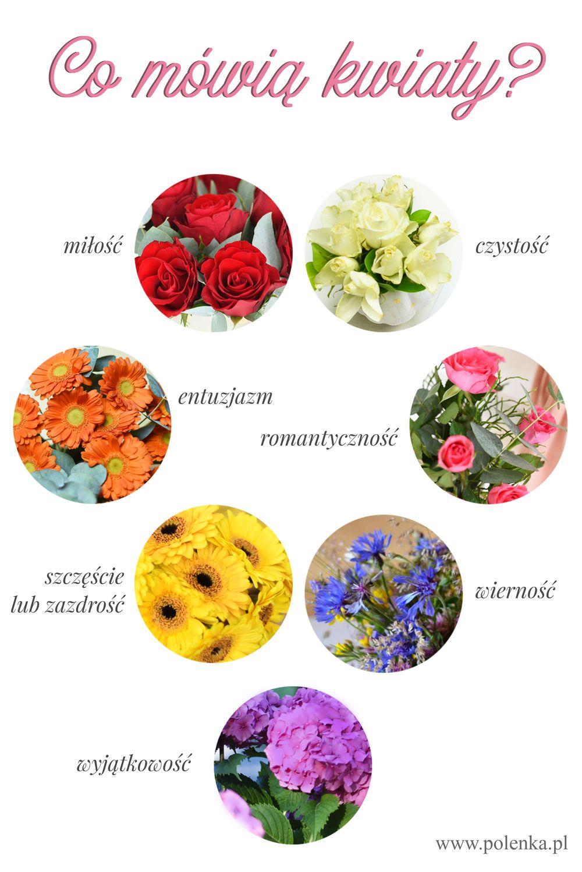 Co mówią kwiaty? Znaczenie kolorów kwiatów i ich symbolika