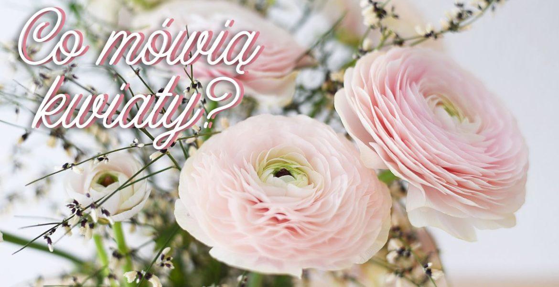 Co mówią kwiaty? Znaczenie kolorów kwiatów